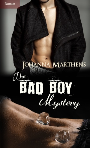 Cover Bad Boys_ Mystery